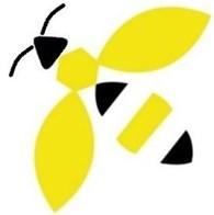 WASP-GSM