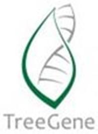 Генетическая лаборатория TreeGene (ТриГен), ТОО
