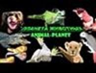 «Планета животных»