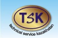 ИП Компания Technical Service Kazakhstan