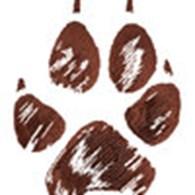 Школа дрессировки собак I LOVE PETS