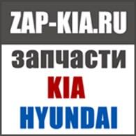 """""""ZAP-KIA"""""""