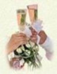 Частное предприятие Агентство полного цикла Свадьба V.I.P.