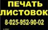 ИП МАРЧЕНКО А В