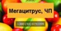 Мегацитрус, ЧП