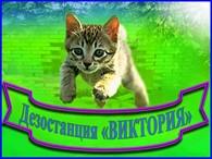 ИП Дезостанция «ВИКТОРИЯ»