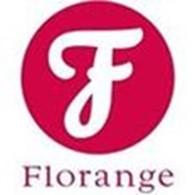 """Другая Интернет-магазин французской коллекции эксклюзивного нижнего белья и ювелирной бижутерии """"Флоранж"""""""