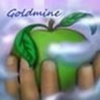 "Частное предприятие Интернет-магазин ""Goldmine"""