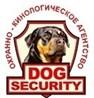 """ОсОО ОХРАННОЕ МНОГОПРОФИЛЬНОЕ АГЕНСТВО """"DOG SECURITY"""""""