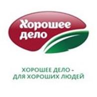 """ООО Торговый дом """"Вектор-С"""""""