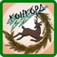 Интернет-магазин «Конкорд»