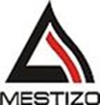 """Общество с ограниченной ответственностью ТОО """"Mestizo"""""""