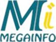 Частное предприятие Мегаинфо, Информационная система