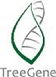 Другая Генетическая лаборатория «TreeGene»