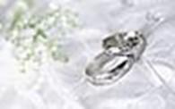 Свадьба плюс