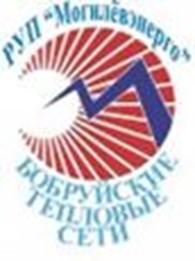 Бобруйские тепловые сети, Филиал РУП Могилевэнерго