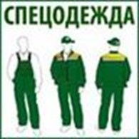 СПД Шевченко В.С.