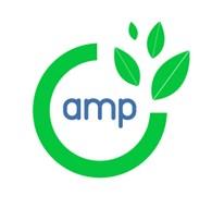 AMP Digital Organic Agency