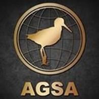 "ГК ""AGSA"""