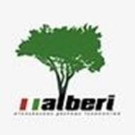 дизайн-студия «Alberi»