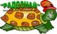 Субъект предпринимательской деятельности Домашний детский сад «РадоЗнай»