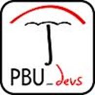 Субъект предпринимательской деятельности PBU-devs