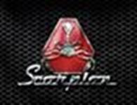 Общество с ограниченной ответственностью Охранное агентство Скорпион