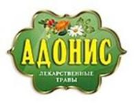 «Адонис» ООО