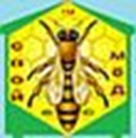 Частное предприятие Ульи, мёд, кормушки, стамески, пчелопакеты, щетки, медогонки, рамки, фиксаторы, прополис, медоносы