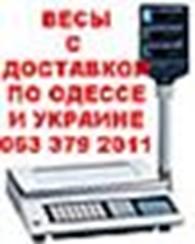 интернет-магазин «ТоргВес»