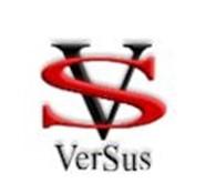 Частное предприятие Versus Company