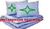 Субъект предпринимательской деятельности ИП «Жастык тазалау»