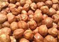 LTD Колхидский орех