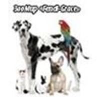Частное предприятие Интернет-магазин зоотоваров «Fendi-Grace»