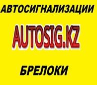 ИП Системы охраны автомобиля