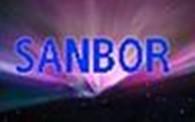 Совместное предприятие SANBOR