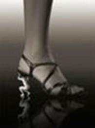 Субъект предпринимательской деятельности Ремонт обуви кожгалантереи (Леди, мы вас поддержим!)