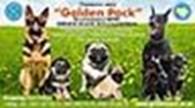 Другая Golden Pack