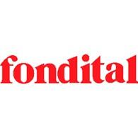 Производитель радиаторов и котлов Fondital S.p.A