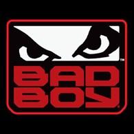 ИП BadBoy