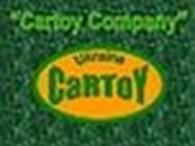 Частное предприятие CarToy