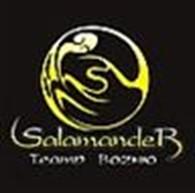 """Театр вогню """"Salamander"""""""
