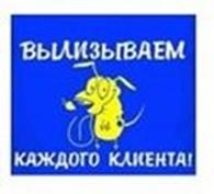 """Публичное акционерное общество ООО """"МетСтройСпектр"""""""