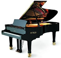 Настройка рояля и пианино.
