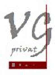 Частное предприятие Victor group