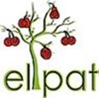 Субъект предпринимательской деятельности Патентне агентство «elpat»