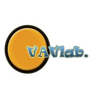 """VAVlab."""
