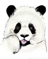 """""""Панда"""""""