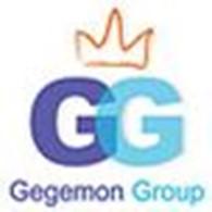 Общество с ограниченной ответственностью Gegemon Group