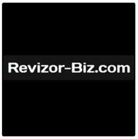 revizor-biz.com всё о заработке